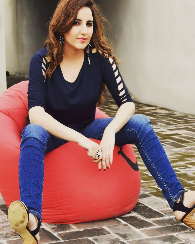Hareem Shah Harassed At An Event 14