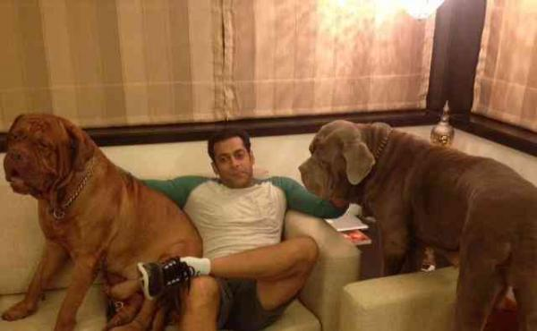 Unseen Pictures of Salman Khan's House in Mumbai