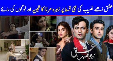 Ishq Zahe Naseeb Episode 29 Story Review - Sameer's Mental Breakdown