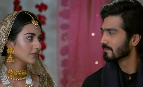Wives Keeping Secrets From Supportive Husbands in Pakistani Dramas