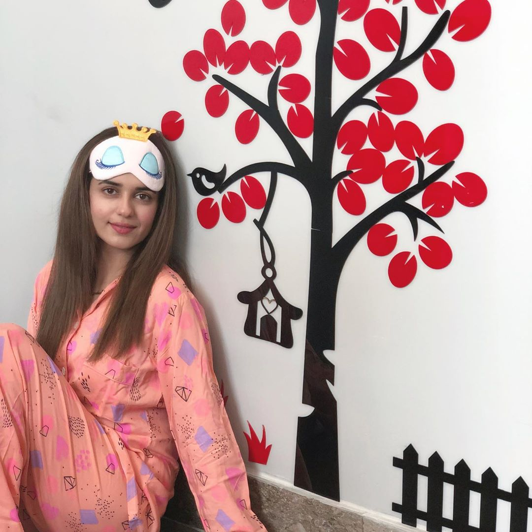 Pakistani Celebrities Pictures from Lock Down Day 15 39
