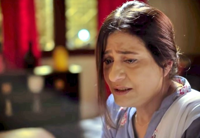Pakistani Actors Who Are Being Typecast