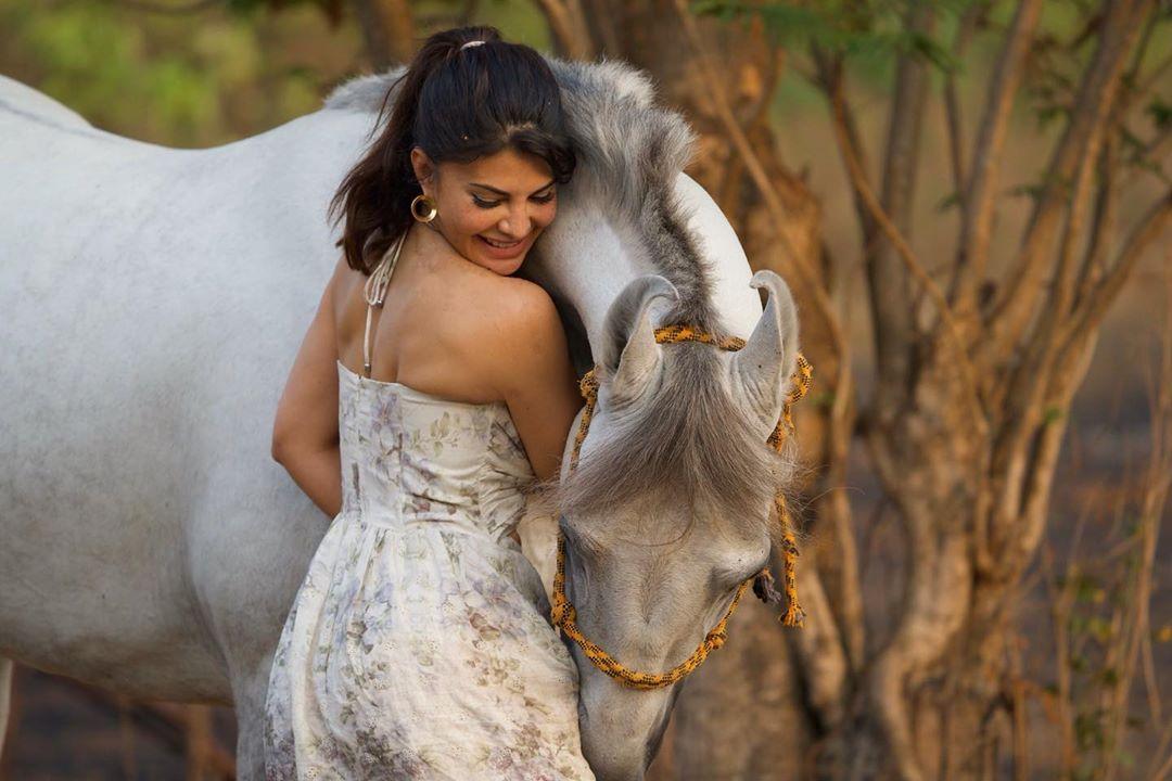 Salman Khan Luxurious Farmhouse During Lock Down