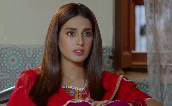10 Pakistani Drama Characters Viewers Loved To Hate