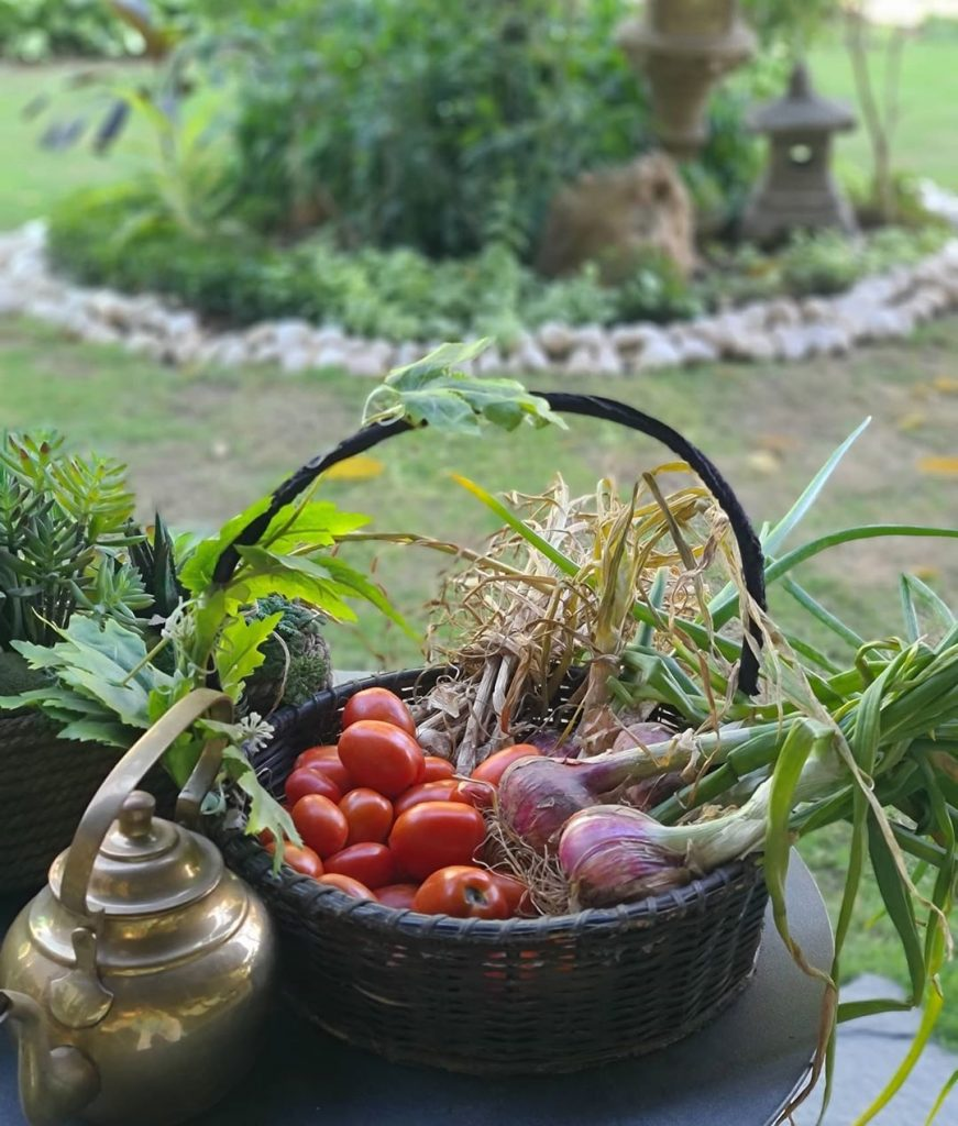 Maria B Shares Her Love For Organic Food