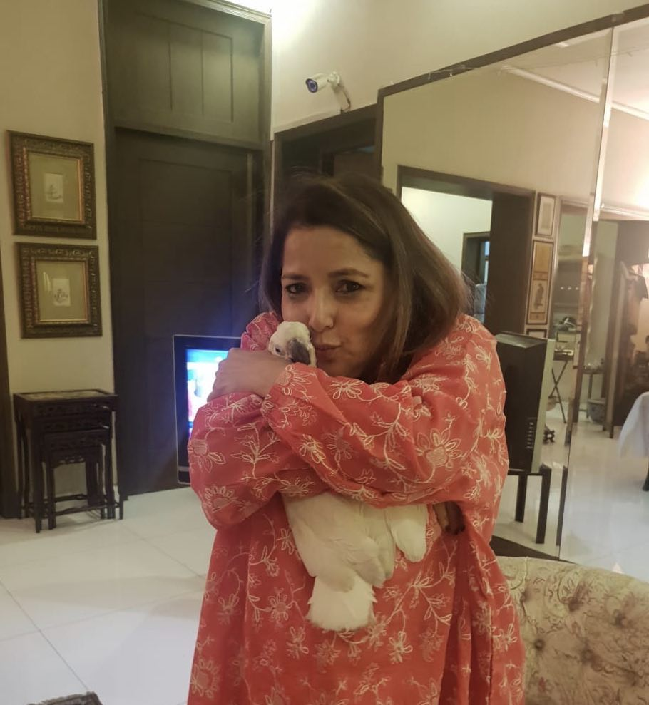 A Glimpse On the Life of Babra Sharif – Old Pictures in HD