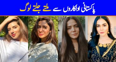 Lookalikes of Pakistani Celebrities From Around The World