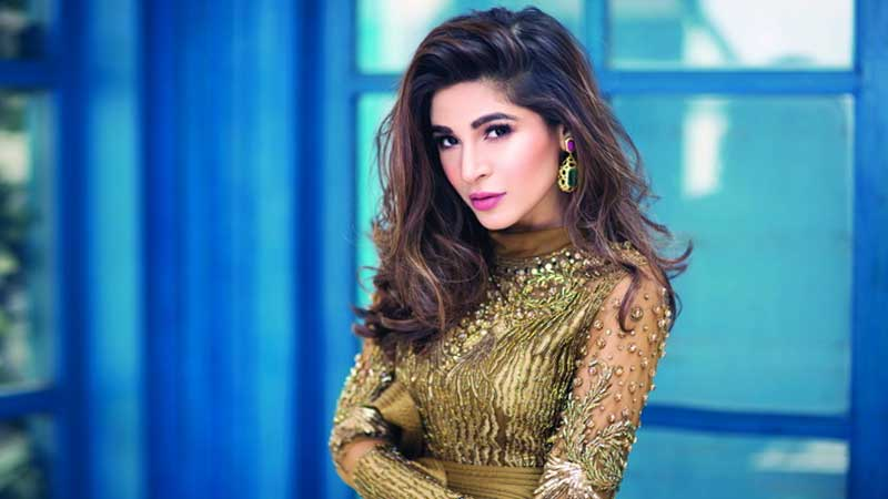 Famous Pakistani Celebrities Who Have An Expensive Taste