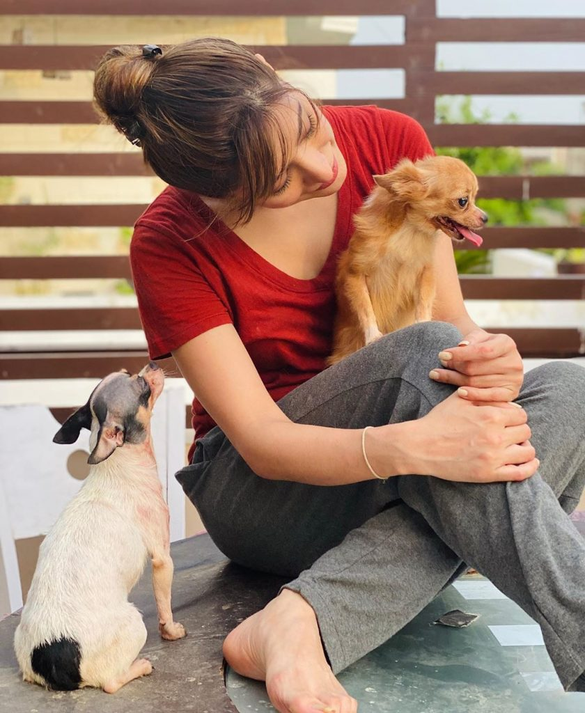 Adorable Pictures of Mehwish Hayat with her Pet Doggies