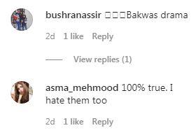 Sadaf And Shahroz Face Immense Crticism On Their Eid Telefilm