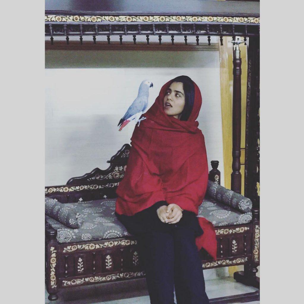 A Quick Sneak Peek into The Life Of Quratulain Baloch