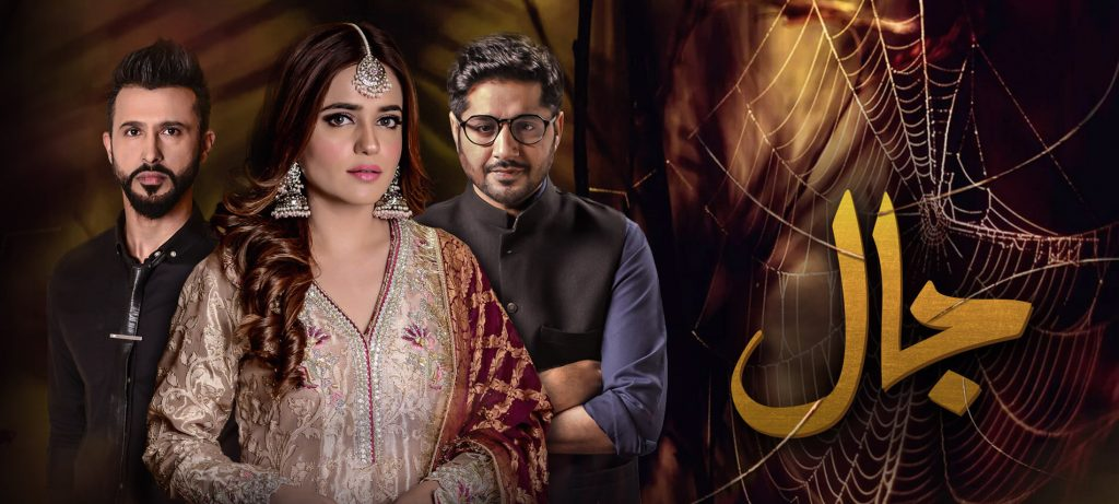 Top 10 Dramas of Imran Ashraf That Are a Must-Watch