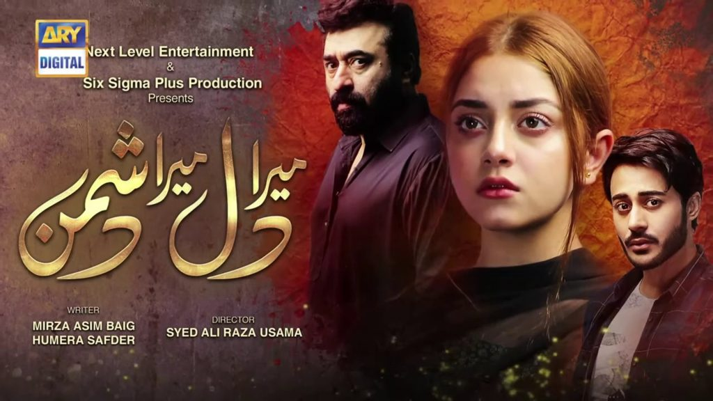 Is It The End For Alizeh Shah And Noaman Sami