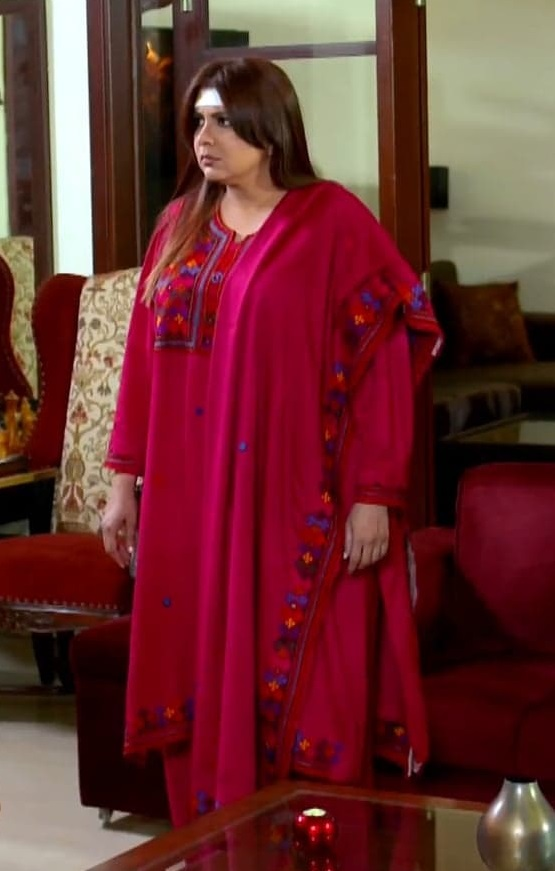 Faiza Hassan 10