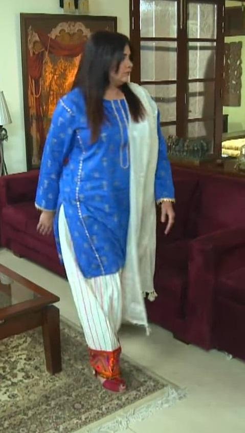 Faiza Hassan 4 7