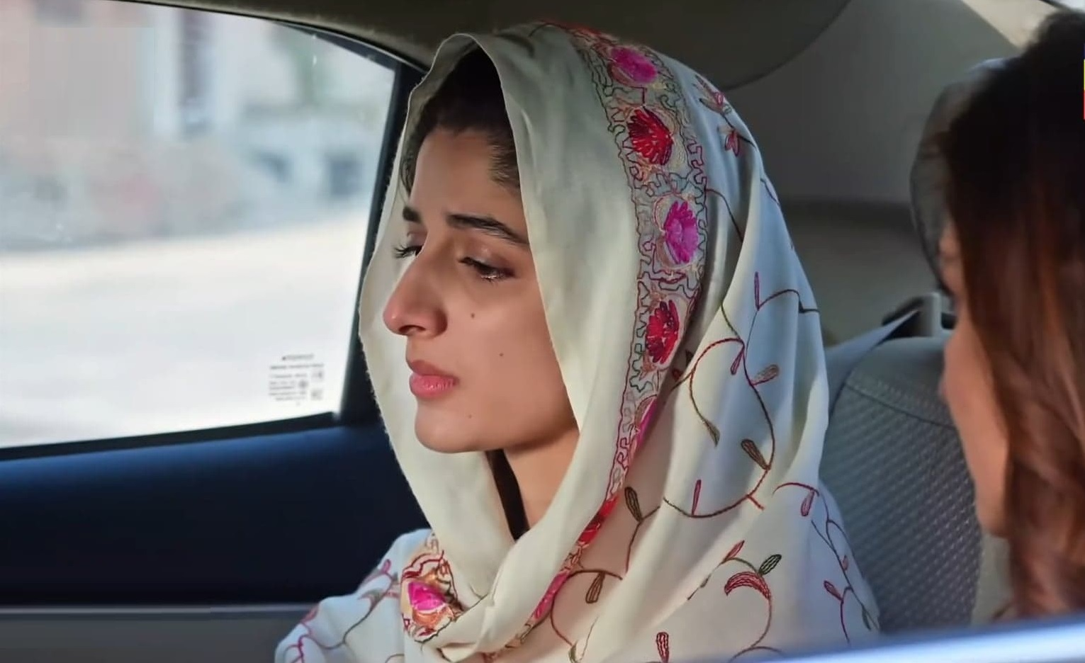 Pakistani Actors Who Owned Their Characters This Season