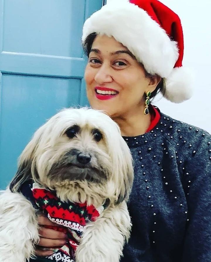 Beautiful Christmas Looks Of Celebrities