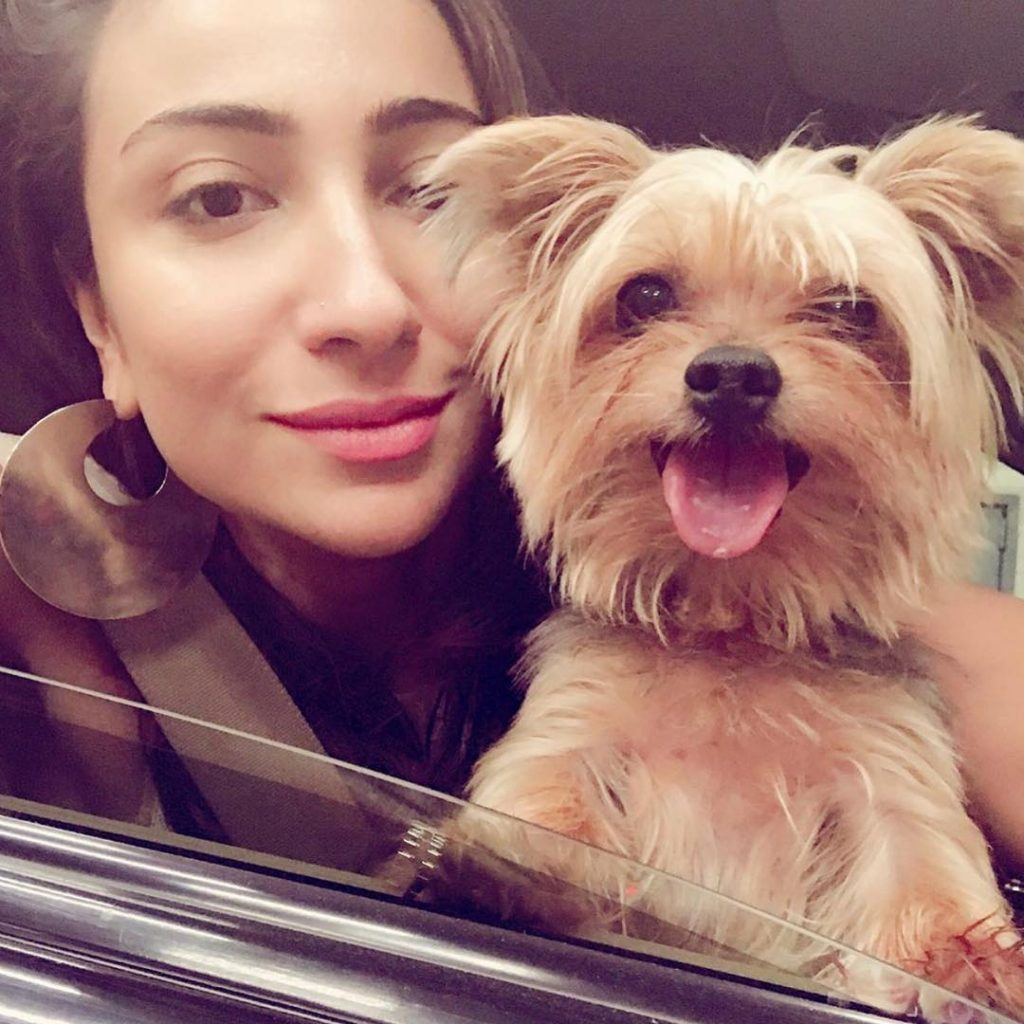 Unseen Pictures of Anoushey Ashraf with Her Favorite Animals