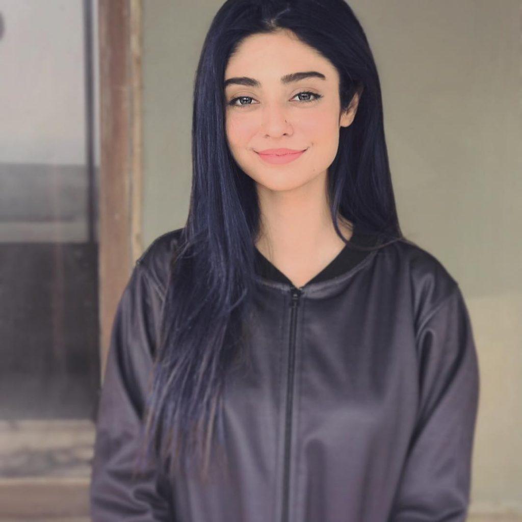 Best Winter Pullovers of Noor Zafar Khan