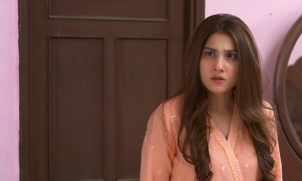 The Others In Pakistani Dramas