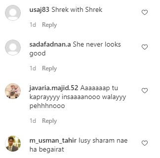 Public Dripping Hate In Comments Section Of Bushra Ansari's New Picture