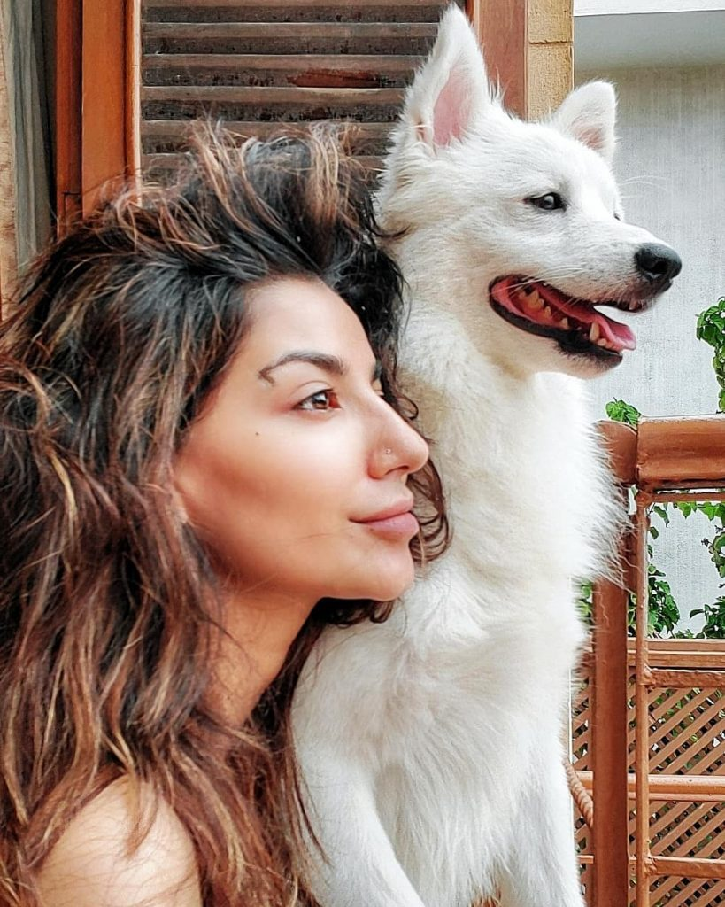 Celebs Who Are Clearly Obsessed With Their Pets