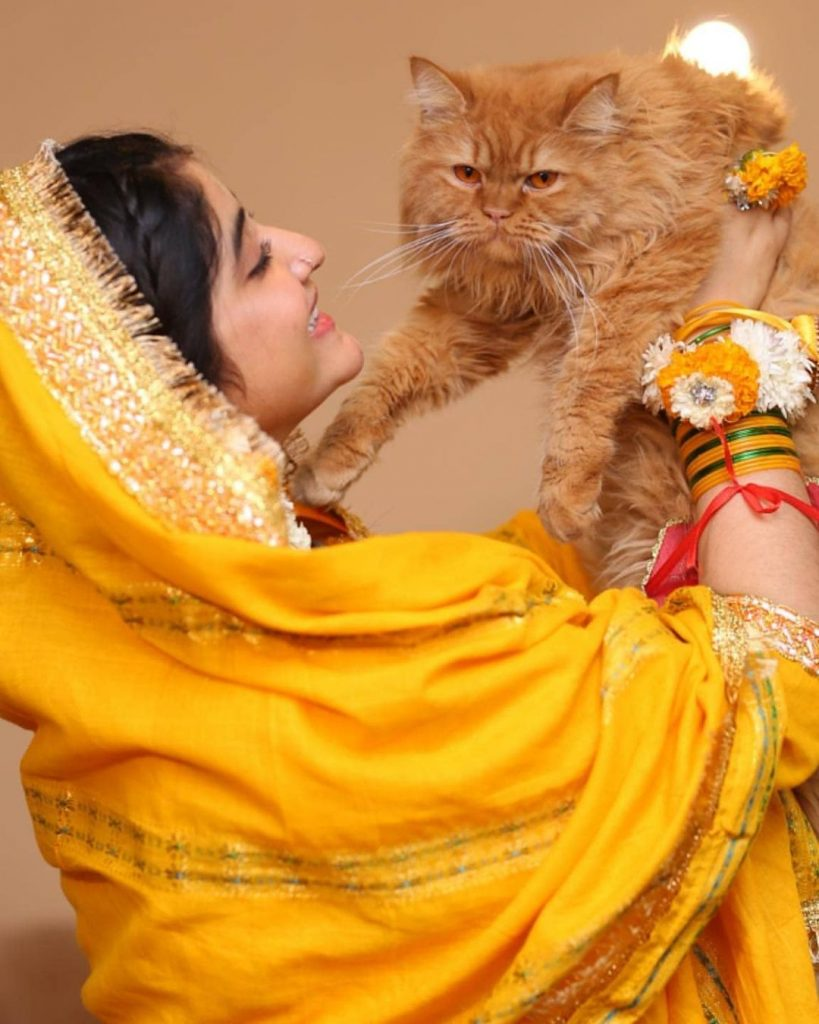 Tik Tok Star Sara Elahi Got Married
