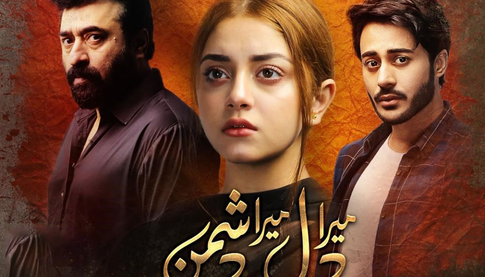 Nominations For ARY People's Choice Award