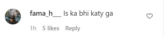 Public Reaction On Latest Video Of Hania Amir With Walid Siddiqui