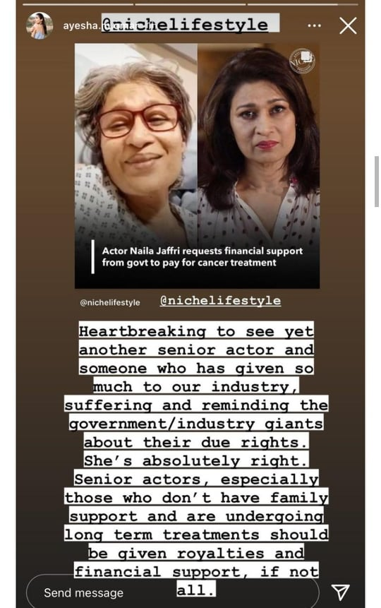 Celebrities Came Forward To Support Naila Jaffery's Stance