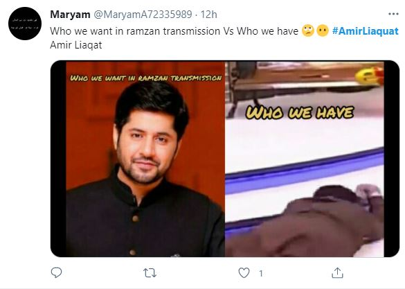 Public Reaction On Amir Liaquat's Nagin Dance Video