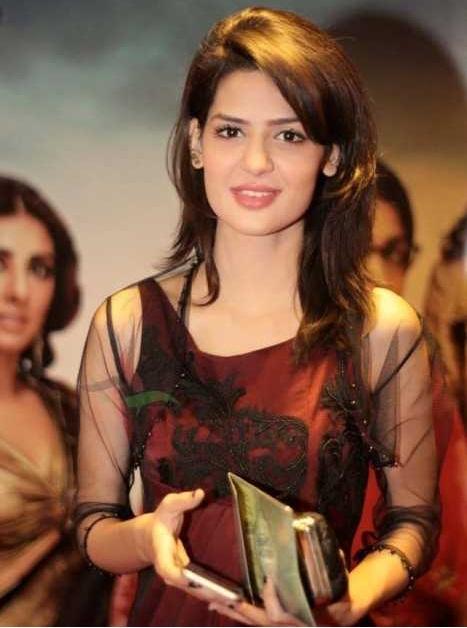 Mujhe Wida Kar Cast In Real Life
