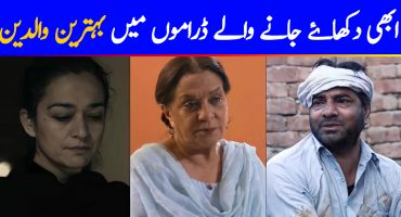 Most Likable Parents In Current Pakistani Dramas