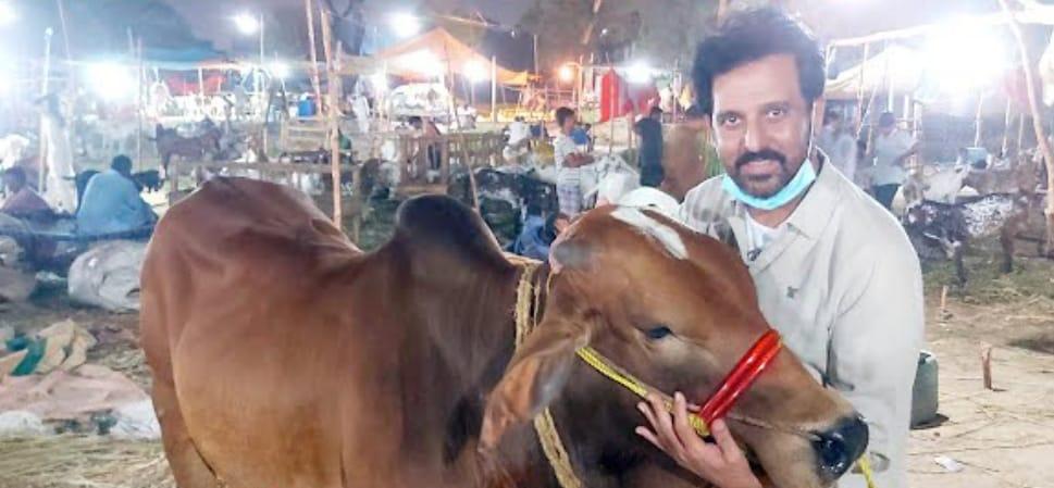 Pakistani Celebrities With Their Sacrificial Animals