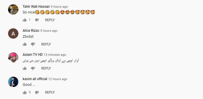 Fiza Ali's New Song Rangraliyan Got Mixed Public Reaction