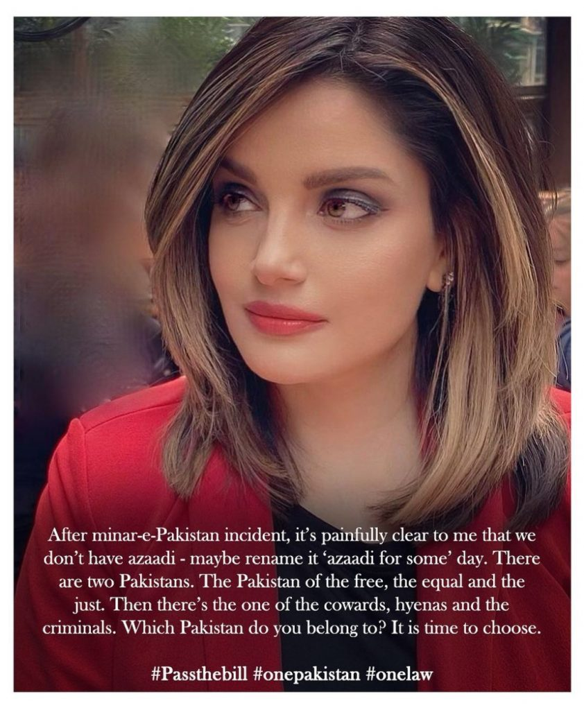 Public Criticism On Armeena Khan On Her Recent Statement About Pakistan