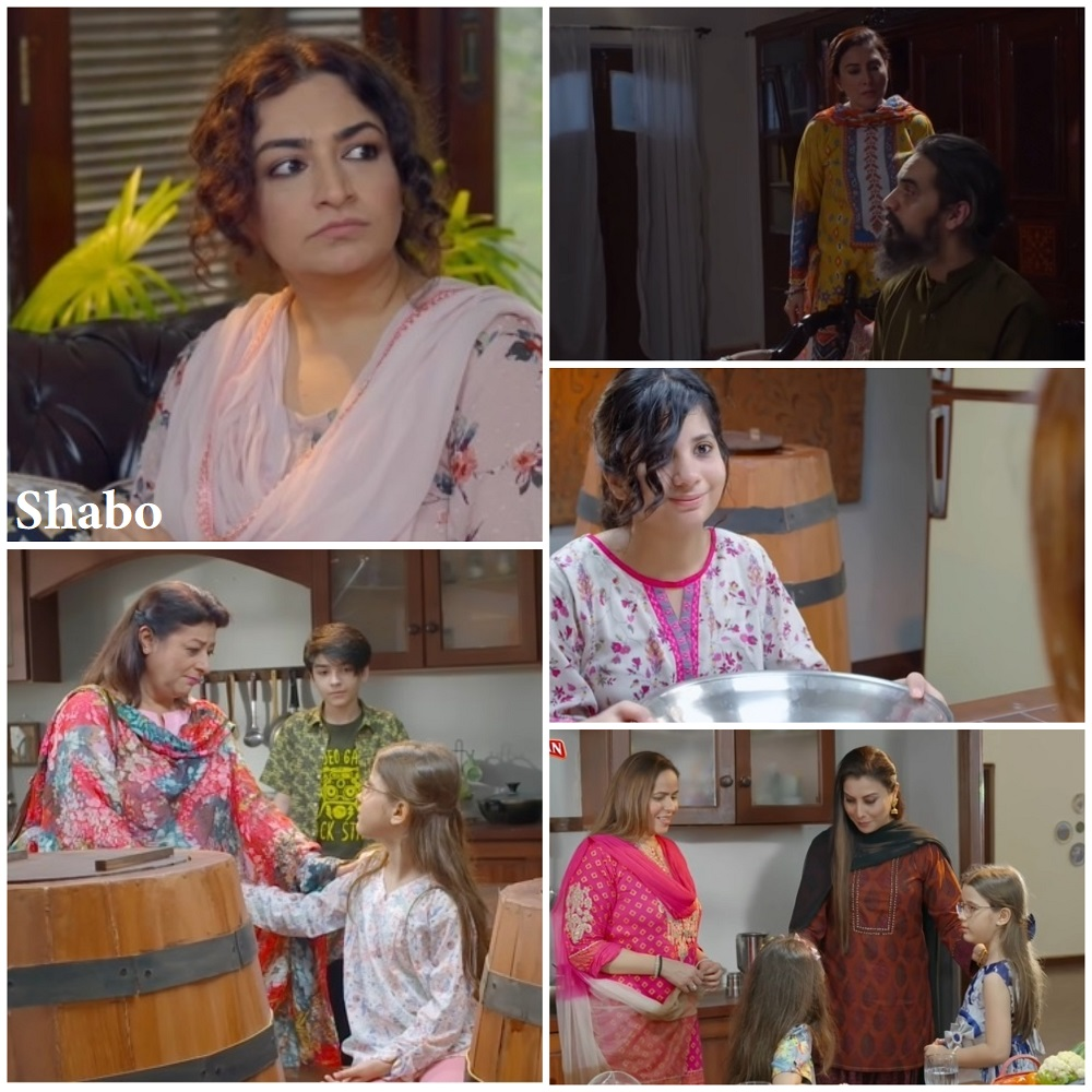 Hum Kahan Ke Sachay Thay Episode 1 Story Review - A Solid Beginning