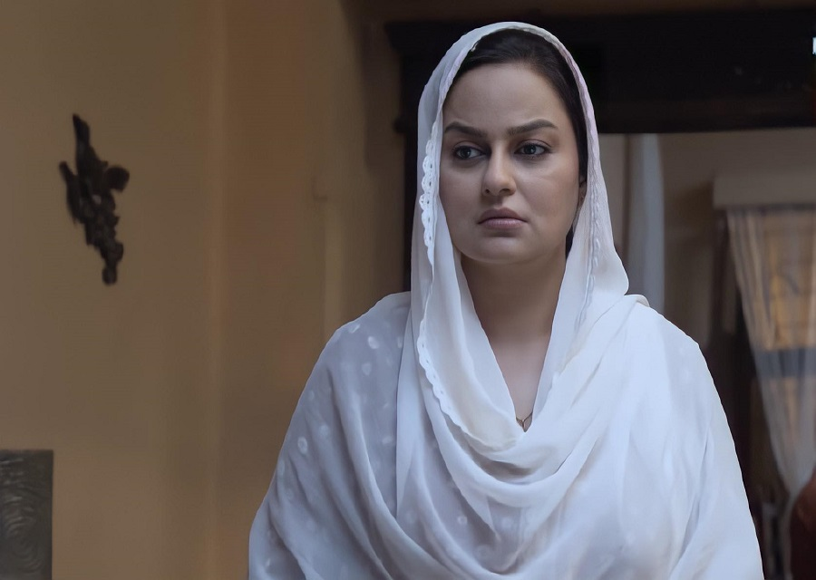 Best On-Screen Characters From Current Pakistani Dramas
