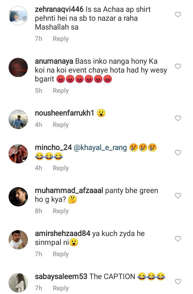 Severe Public Criticism On Ayesha Omar's Independence Day Outfit