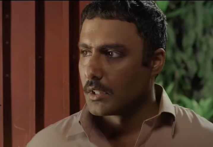 Ahmed Ali Akbar & Ushna Shah Were Not The Initial Choice For Parizaad Main leads