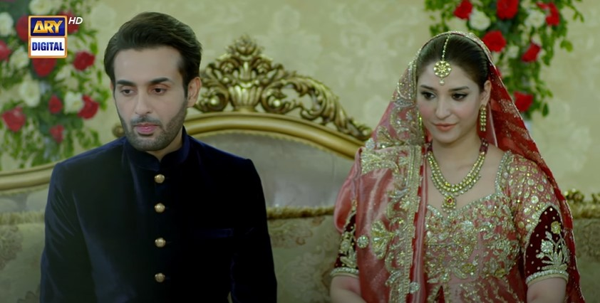 Drama Serial Shehnai Ended On A Happy Note - Public Reaction