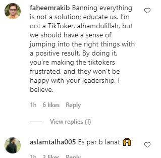 Ushna Shah's Reaction On The Ban Of Tik Tokers On Public Places - Public Reaction