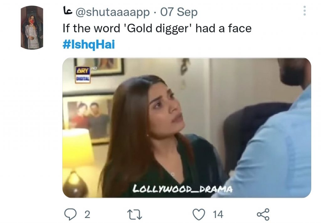 Drama Serial Ishq Hai Ended On Happy Note - Public Opinion