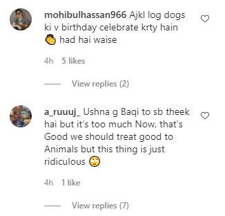 Ushna Shah Celebrating Her Dog's Birthday Got Public's Reproval
