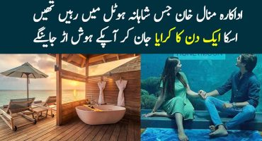 One Day Charges of The Hotel Minal Khan Stayed In Maldives